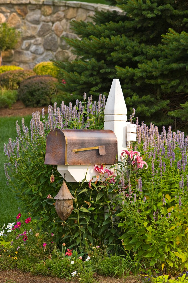 Apartment Mailboxes Landscape Traditional with Curbside Mailbox Day Lilies Front Yard Giant Hyssop Lavender Mailbox Mailbox Ideas