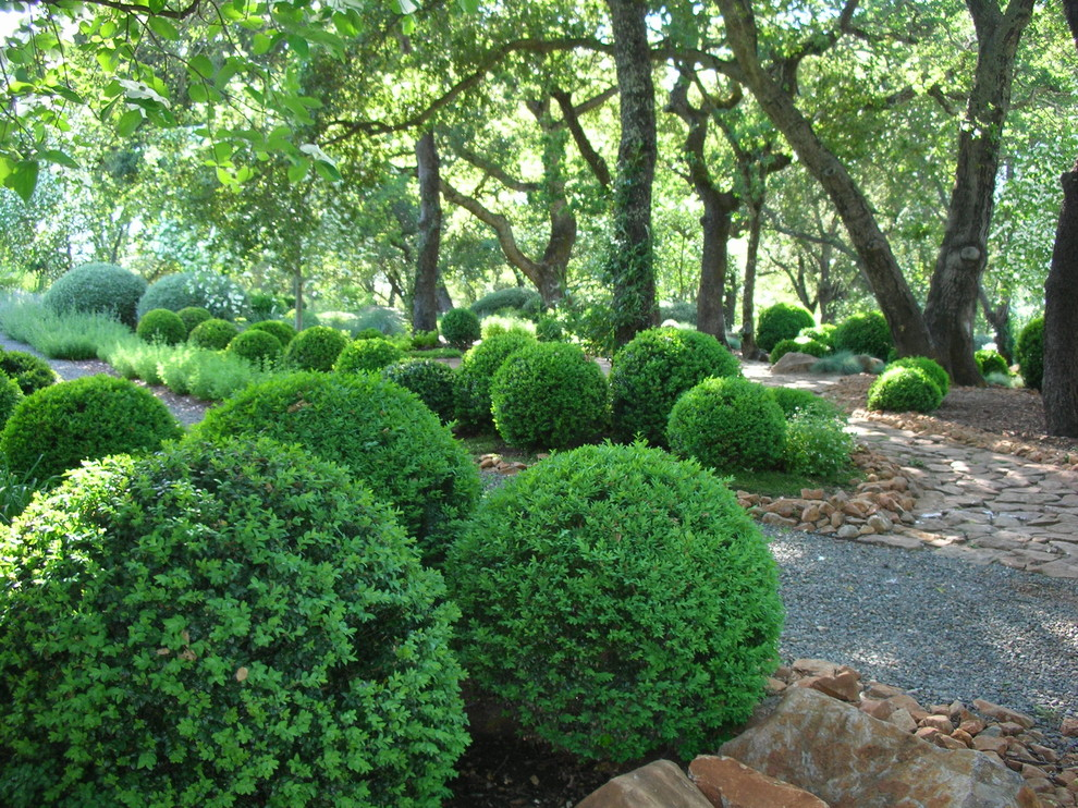 Boxwood Topiary Landscape Traditional with Fieldstone Formal Hedge Gravel Path Hedge Mass Planting Park Path Pavers Permeable