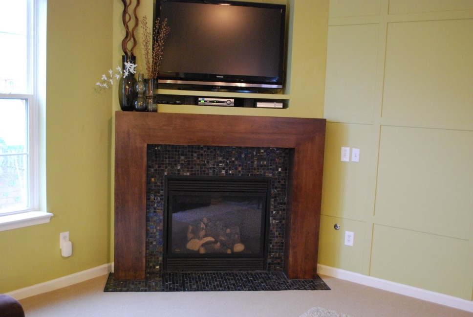 Cable Box Shelf Family Room Modern with None