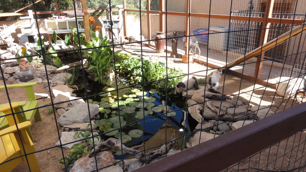 cat enclosures Landscape Eclectic with cat enclosure koi outside pet pet door pet enclosure pond