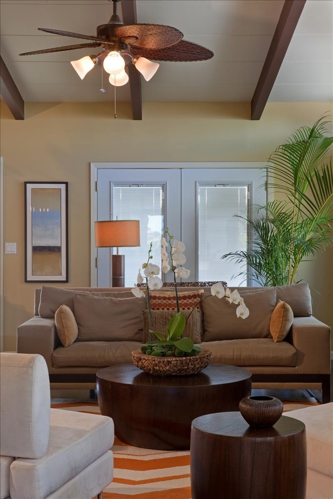 Cuisinart Coffee on Demand Living Room Tropical with Bright Ceiling Beams Ceiling Fan Chevron Dark Wood Houseplant Modern Rug Natural