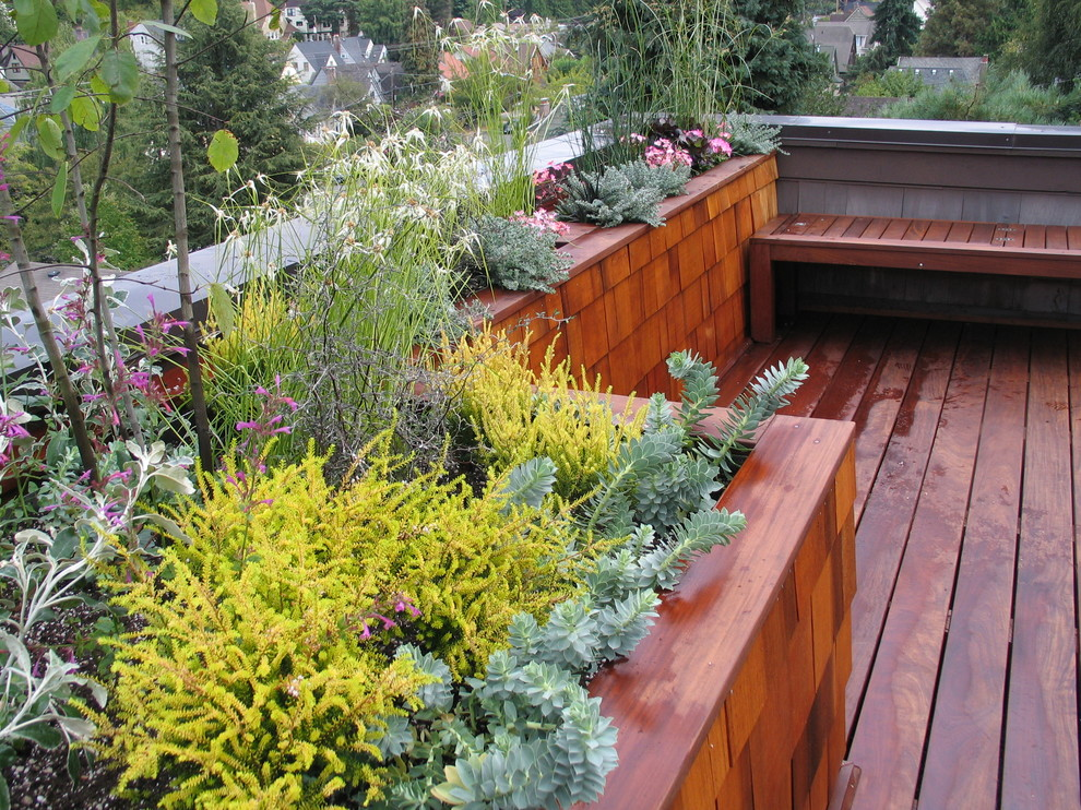 deck planters Deck Contemporary with deck FSC certified living roof planter planter boxes roof terrace shingle siding