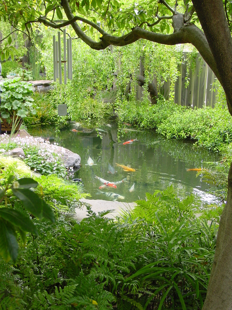 doorbell chimes Landscape Mediterranean with boulder fence fish koi pond small garden stone tree water plants wind