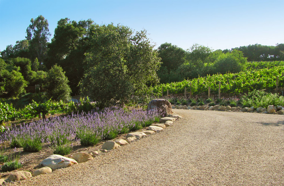 drive rollator Landscape Mediterranean with boulders curved flowers garden gravel path hardscape lavender plants trees vineyard walkway