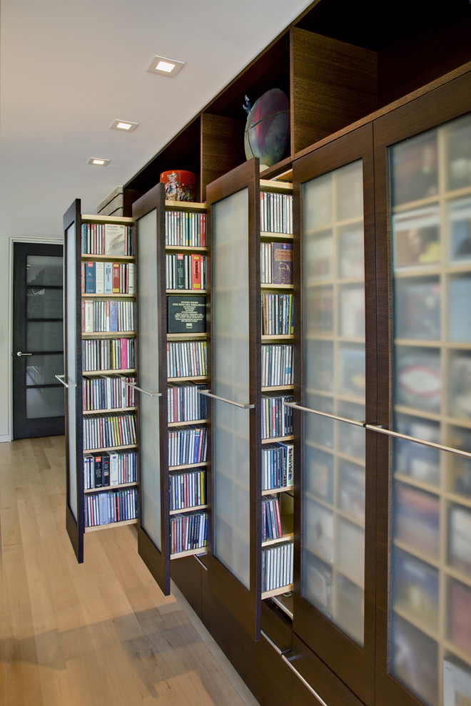 Dvd Wall Shelf Closet Contemporary with Built in Storage Cd Storage Ceiling Lighting Dvd Storage Media Storage Recessed