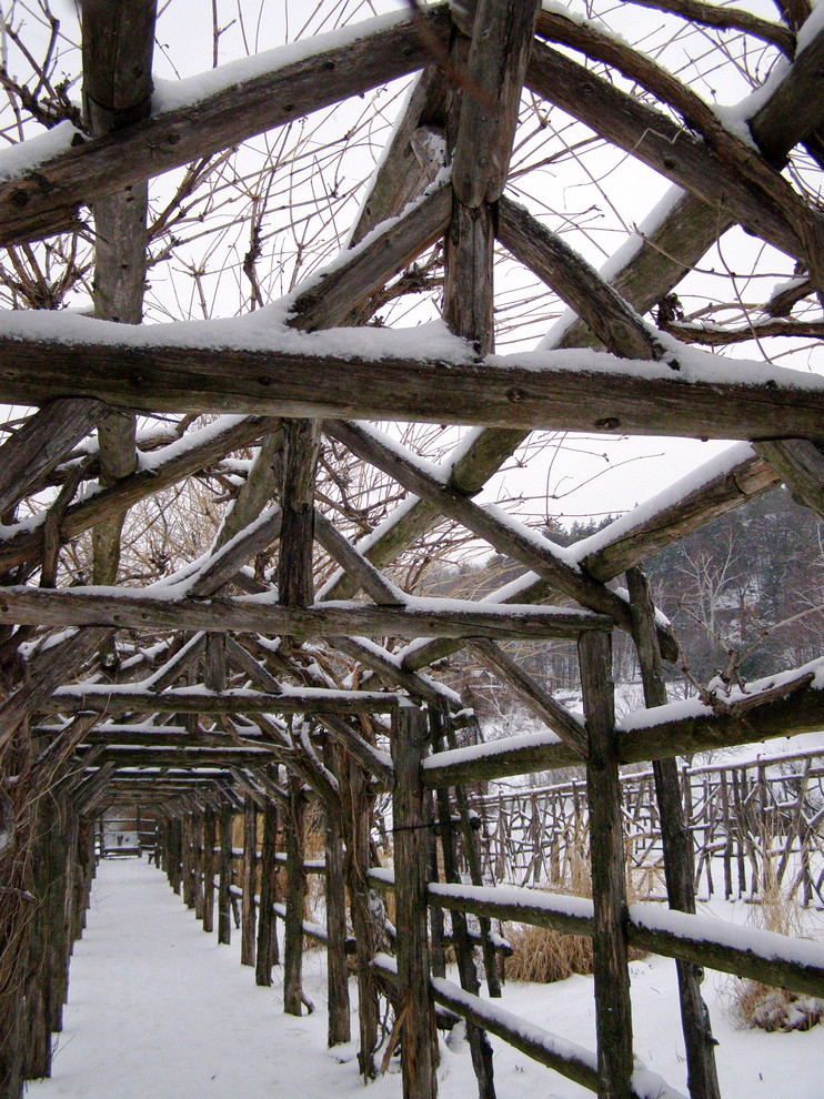 Garden Arbors Landscape Traditional with Arbor Climbing Plants Covered Walkway Snow Trellis Vine Wood Frame