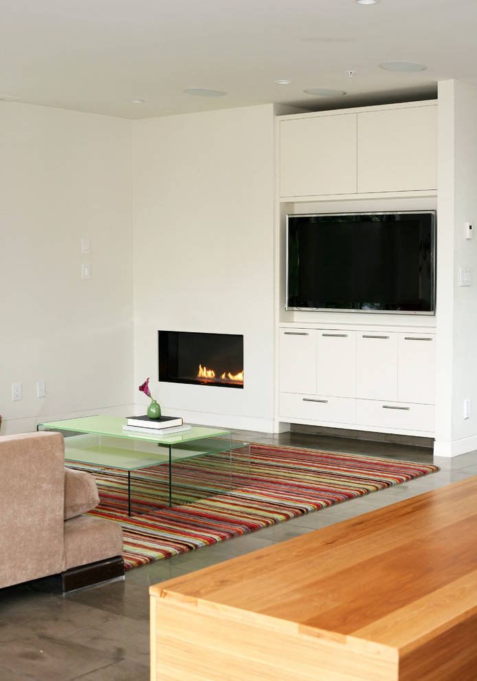 Gel Fuel Fireplace Family Room Contemporary with None