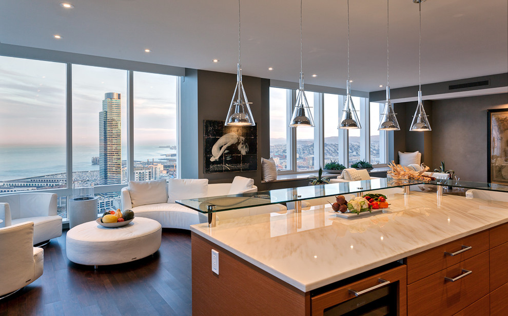 george kovacs Kitchen Contemporary with artwork ceiling lighting dark floor glass countertops gray walls high-rise island lighting