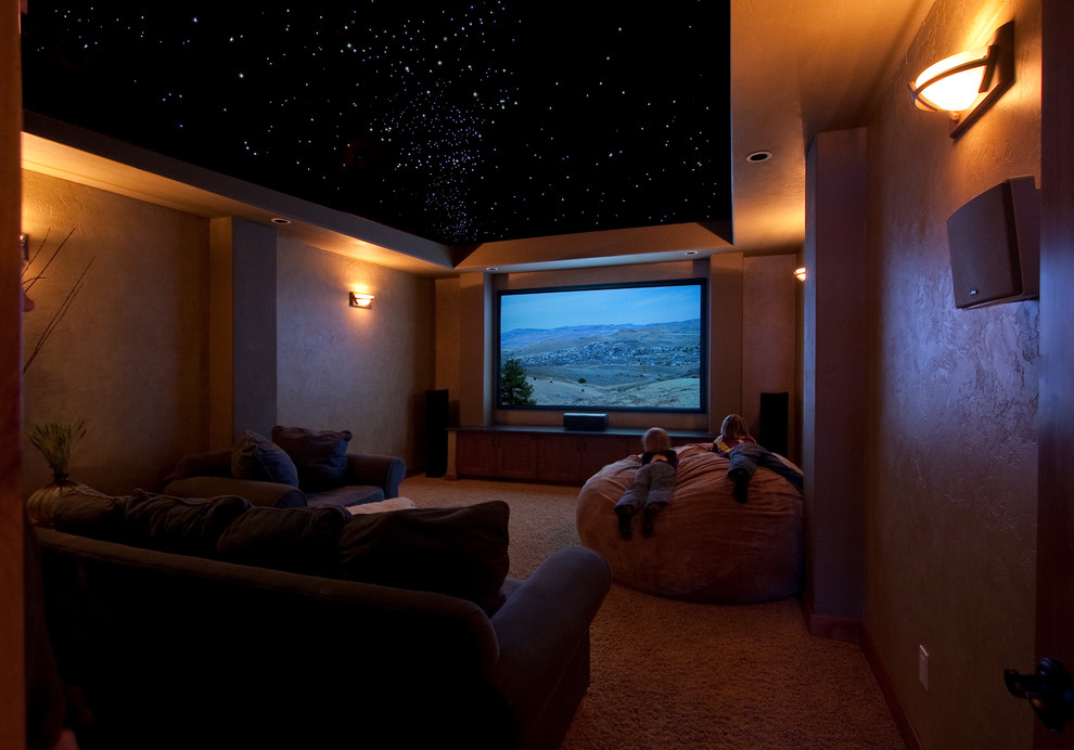 Giant Bean Bags Home Theater Traditional with Fiber Optic Ceiling Pay Room Rear Projector Star Ceiling Theater Theater Room