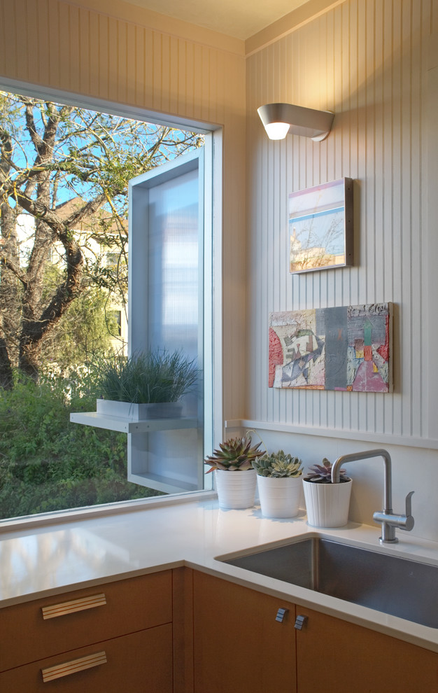 Julien Sinks Kitchen Contemporary with Art Bead Board Flush Cabinets Plant Pots Privacy Screen Stainless Steel Sink1