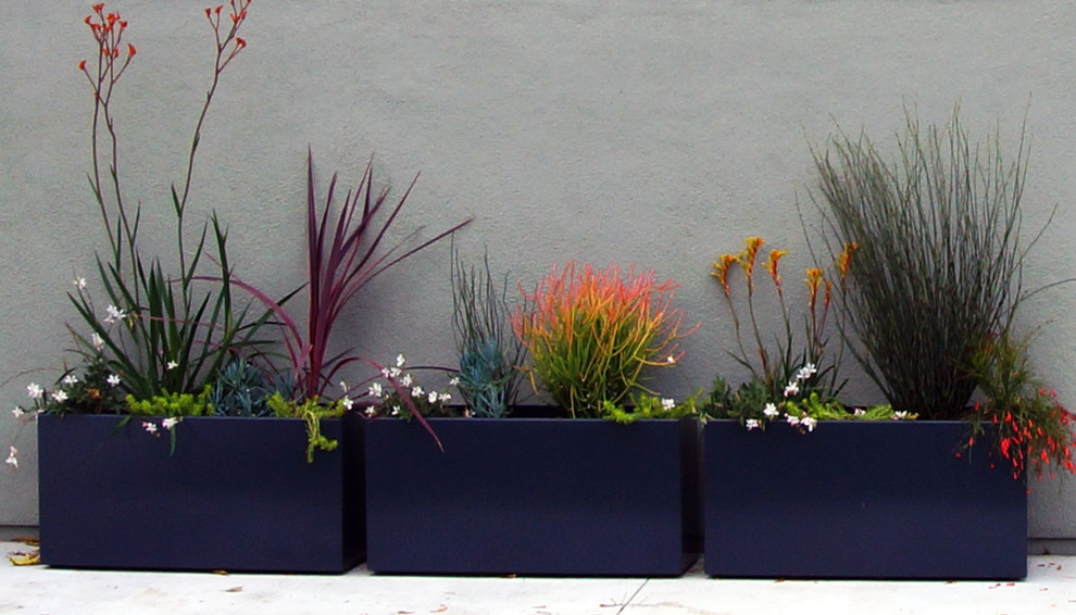 Large Ceramic Planters Landscape Modern With Flower Box Patio Plants Potted  Plants