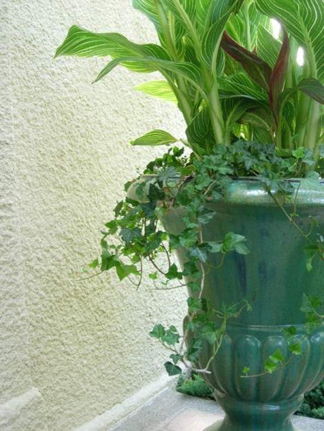 large ceramic planters Spaces with curb appeal large glazed ceramic planter tropical