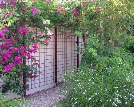 metal trellis Landscape Modern with none
