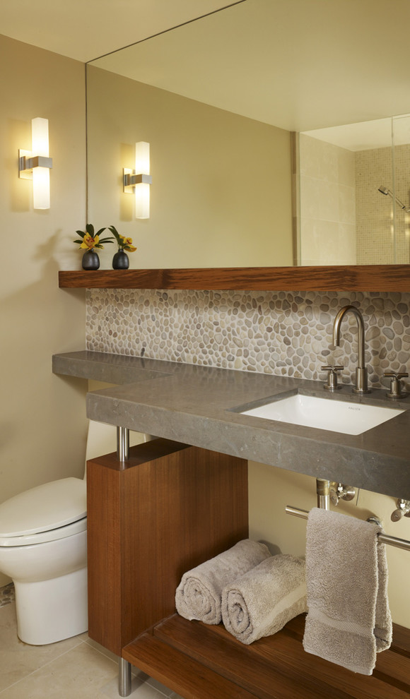 Michael Amini Bathroom Contemporary with Cement Counter Contemporary Bathroom Floating Shelf Modern Modern Vanity Pebbles River Rock