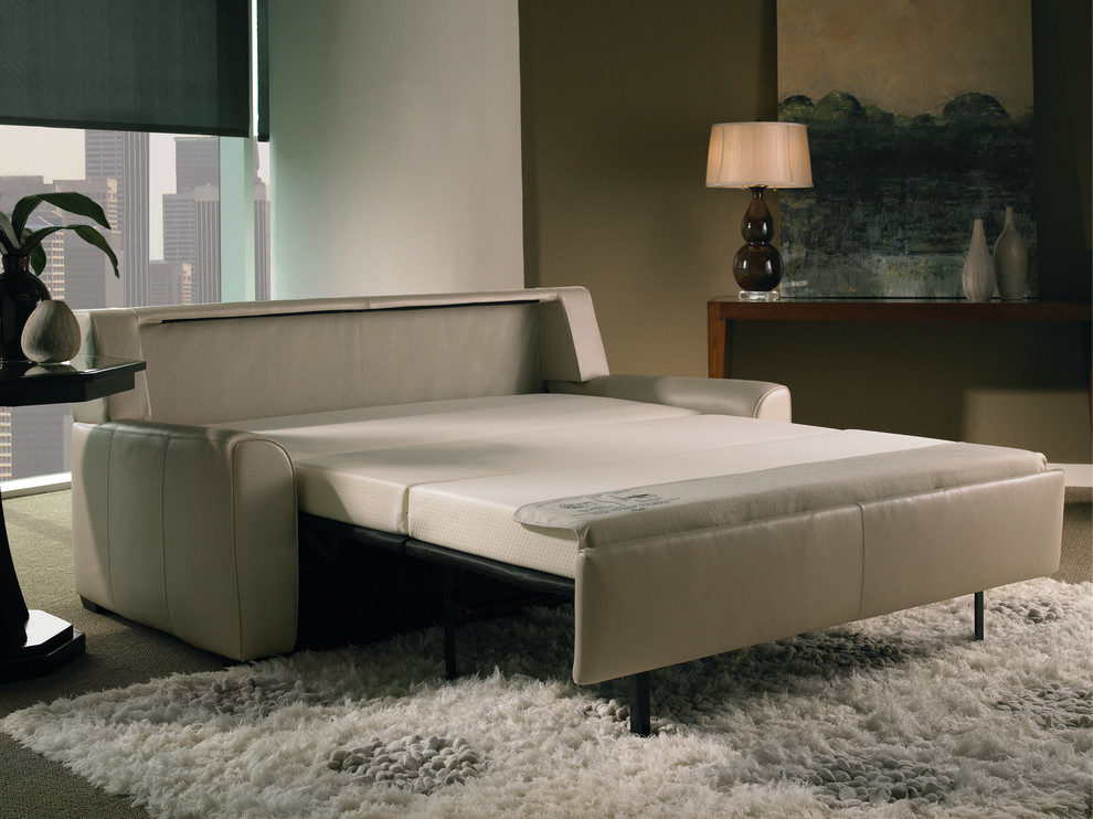 Modern Sleeper Sofa Family Room Contemporary with American Leather Comfort Sleeper Contemporary Sleeper Modern Sleeper Sofa Modern Sofa Bed