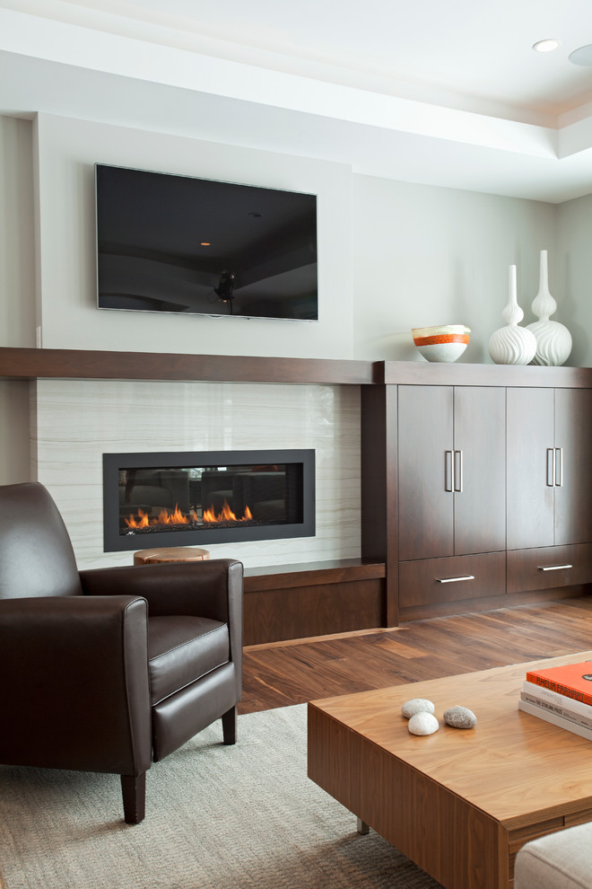 Napoleon Fireplace Living Room Contemporary with Brown Armchair Built in Cabinets Gray Area Rug Soffit Tray Ceiling Wood