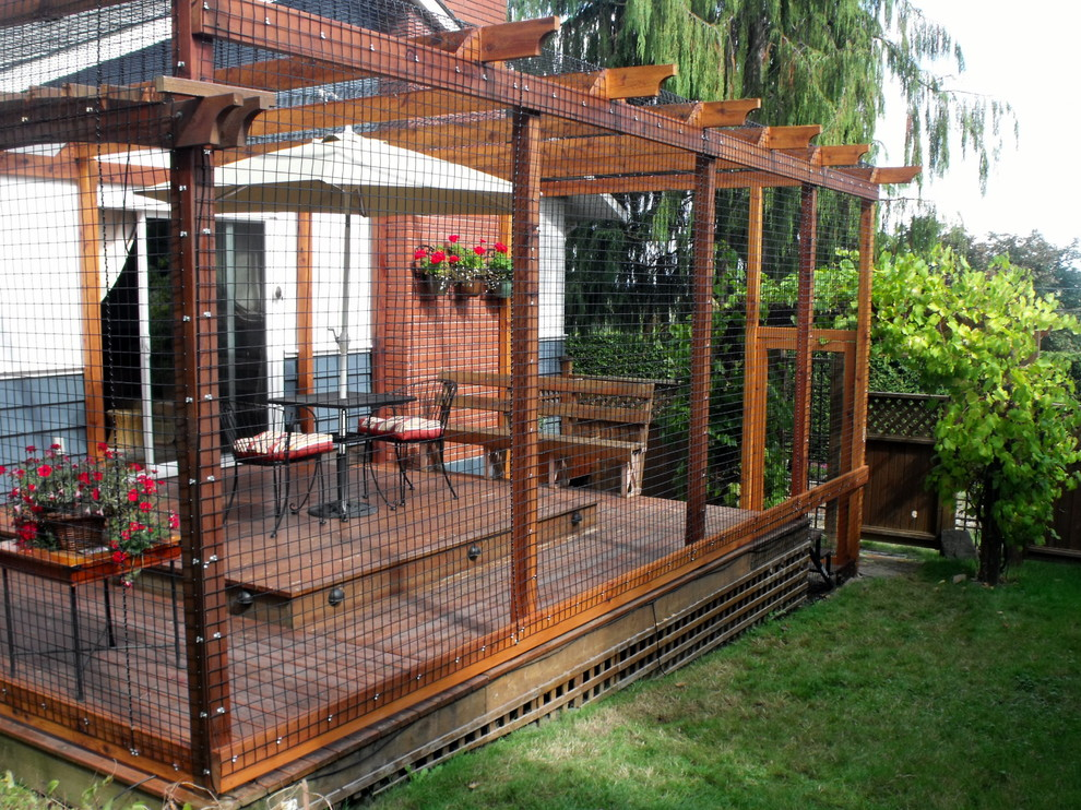 outdoor cat enclosures Spaces Contemporary with Cat enclosures cats Outdoor cat enclosures Pets