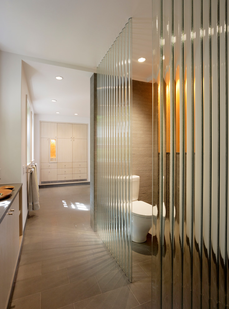 Pilsner Glass Bathroom Modern with Bluestone Brick Brown Built in Cabinets Corrugated Glass Glass Wall Narual Wood Neutral