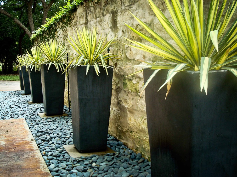 planter pots Landscape Contemporary with none