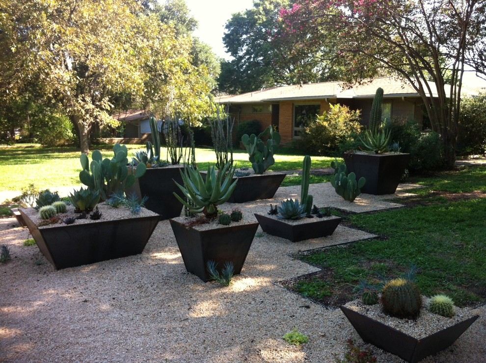 Planter Pots Landscape Southwestern with Cactus Grass Gravel Gravel Landscape Gravel Patio Landscape Lawn Outdoor Potted Plant