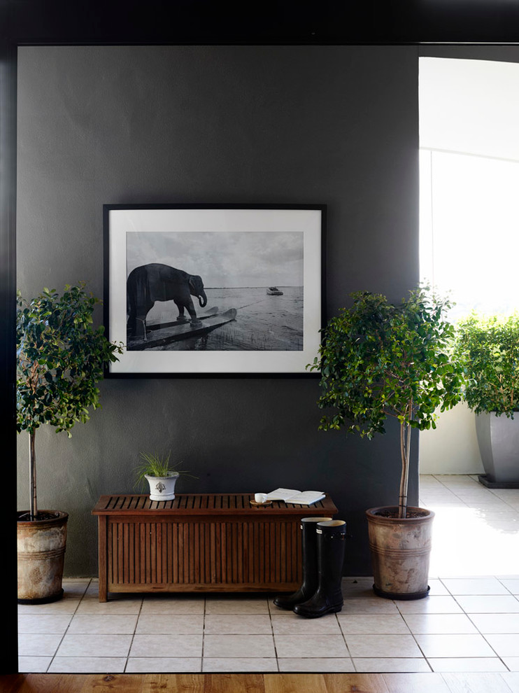 planting pots Entry Transitional with apartment Australia Brisbane claire stevens interior design decor Decorating Home home decor
