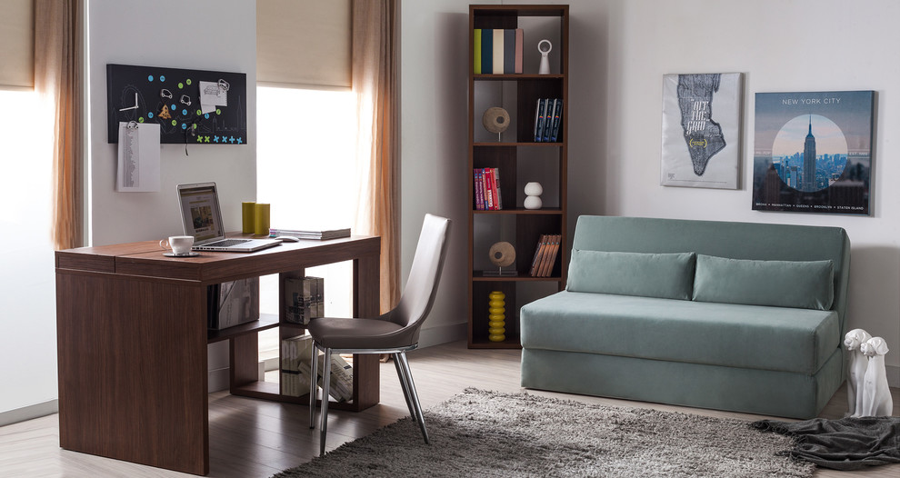 Pull Out Couches Living Room Modern with Affordable Furniture Bedroom Furniture Furniture Living Room Furniture Nyc Furniture Pull Out