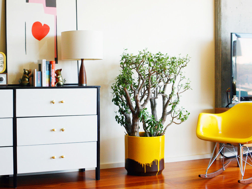 rachael ray pots Bedroom Eclectic with bookends chest of drawers container plants dresser modern icons potted plants rocking