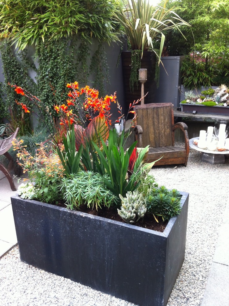 rectangular planters Landscape Tropical with balinese chairs bamboo bold color bold colour candles canna container containers crocosmia