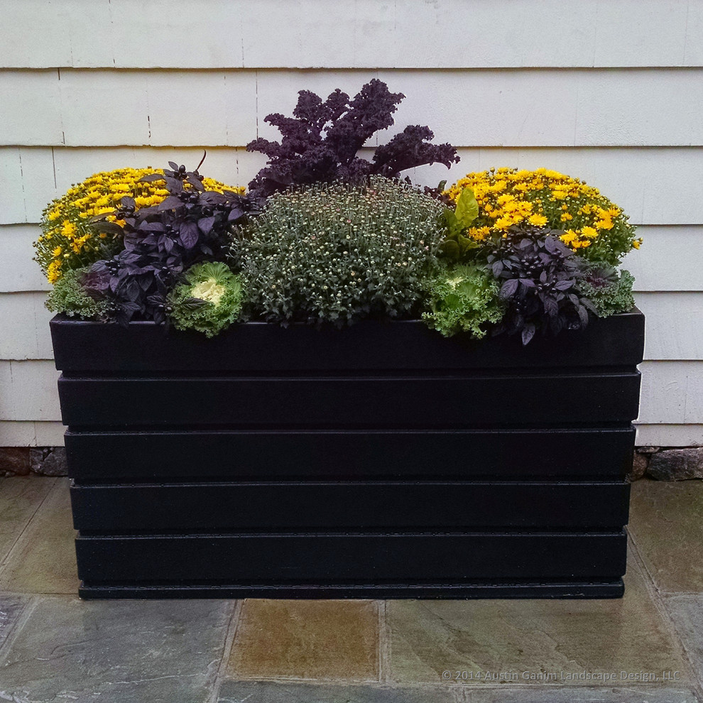 resin planters Patio Contemporary with black foliage Black Planters caviar black finish chrysanthemums container garden container plants