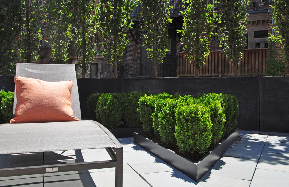 Resin Planters Spaces Contemporary with Beech Hedge Bluestone Bluestone Paving Boxwood Chaise Lounge Modern Roof Top Modern
