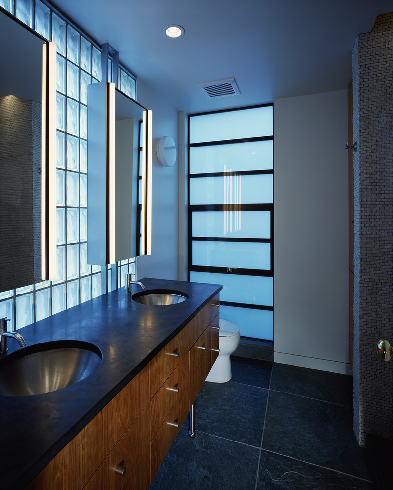 Robern Bathroom Modern with Awning Windows Bathroom Hardware Ceiling Lighting Double Sinks Double Vanity Frosted Glass