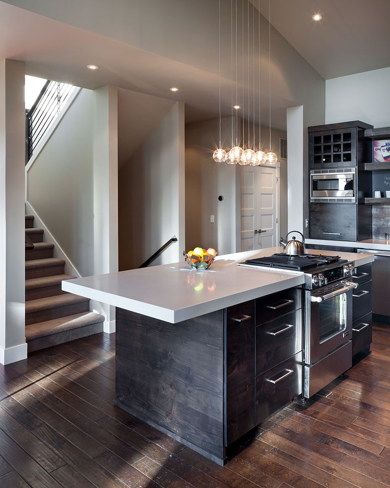 Shaw Flooring Kitchen Contemporary with 3 Form Accent Lighting Appliance Garage Barn Wood Built in Cabinet Cabinet Pulls Caesarstone
