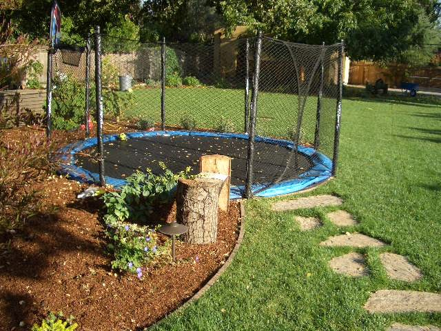 Trampoline with Enclosure Landscape Modern with None