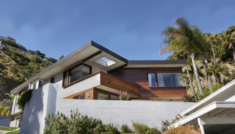 Tree Topper Exterior Modern with None