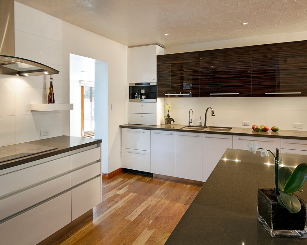 Turbo Oven Kitchen Contemporary with Caesarstone Countertop Contemporary High Gloss Horizontal Grain Integrated Appliances Miele Appliances Mixed