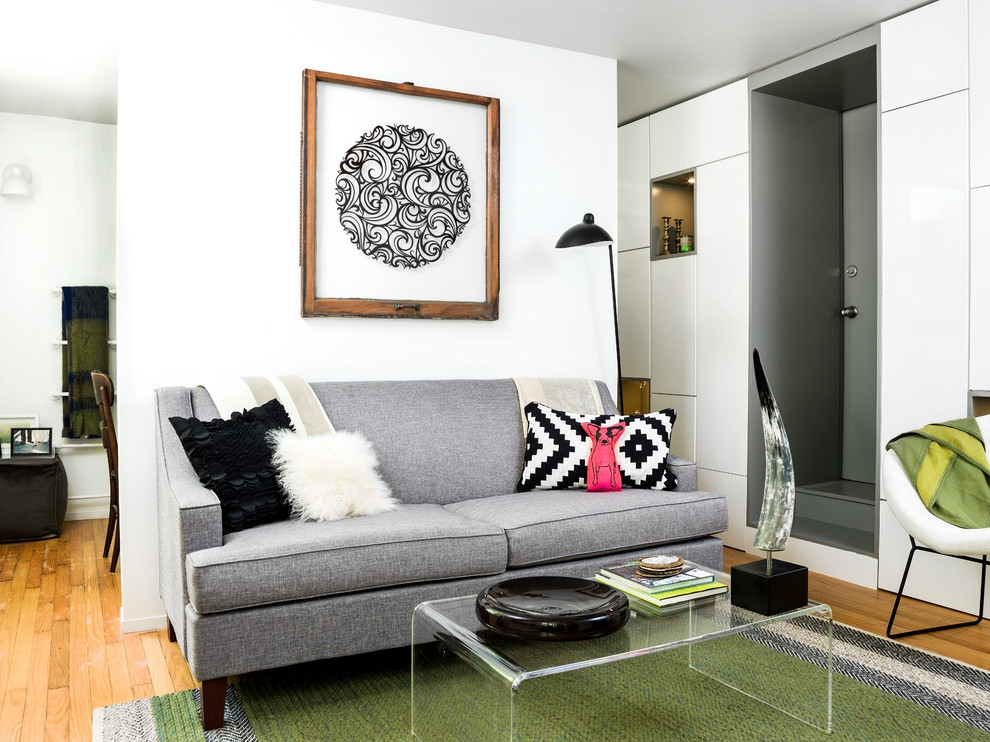 waterbeds for sale Living Room Eclectic with apartment Art bucktown compact condo condominium contemporary creative design Eclectic efficiency efficient