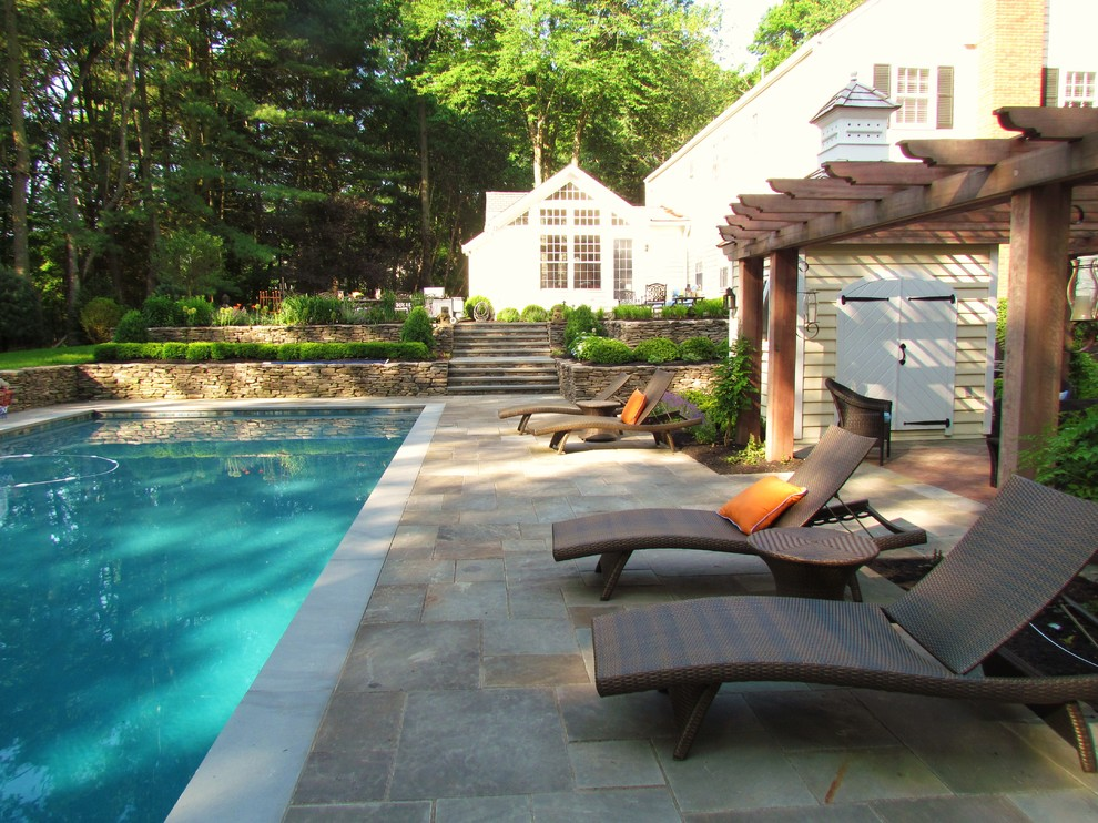 Wayfair Patio Furniture Landscape Traditional with Lounge Area Outdoor Chaise Lounges Pool Shed Rectangular Pool Stone Pool Deck1