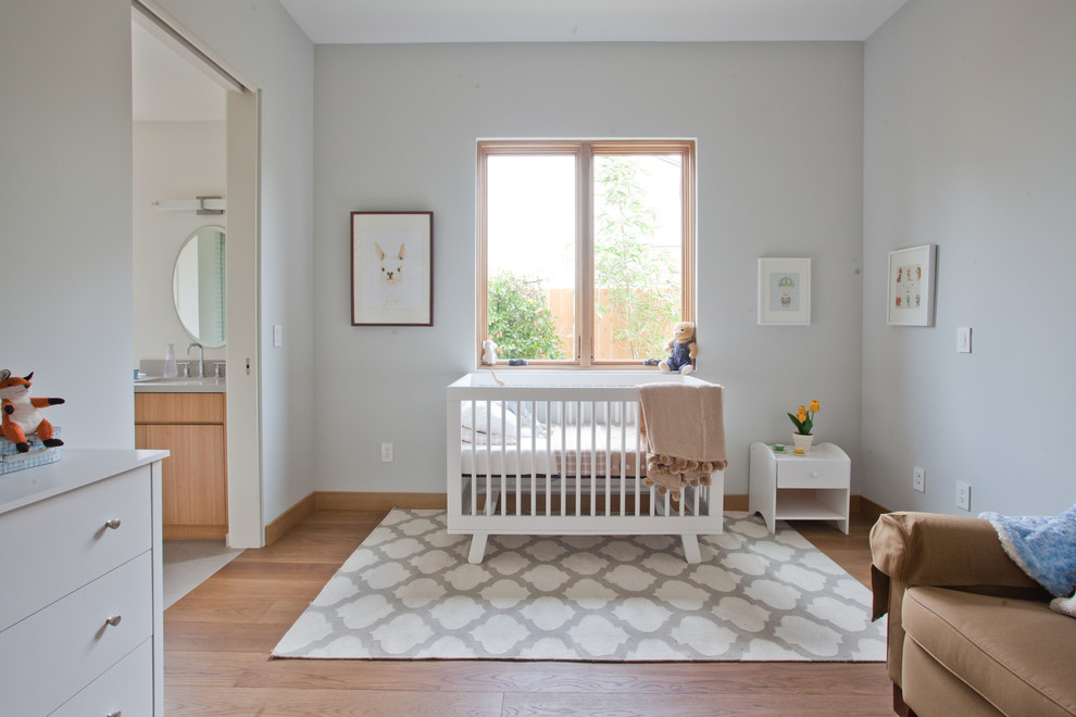 Wayfair Rugs Kids Contemporary with Architectural Home Baby Nursery Boy Nursery Built Ins Girl Room Jack And