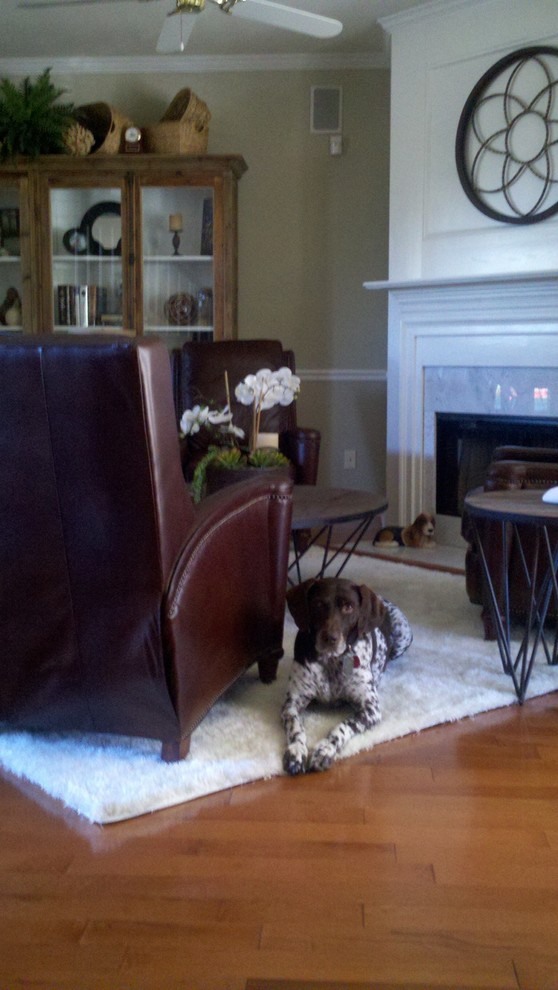 White Faux Fur Rug Living Room Modern with Brown Leather Arm Chair Dog Faux Fur Rug White Glass Cabinet Doors
