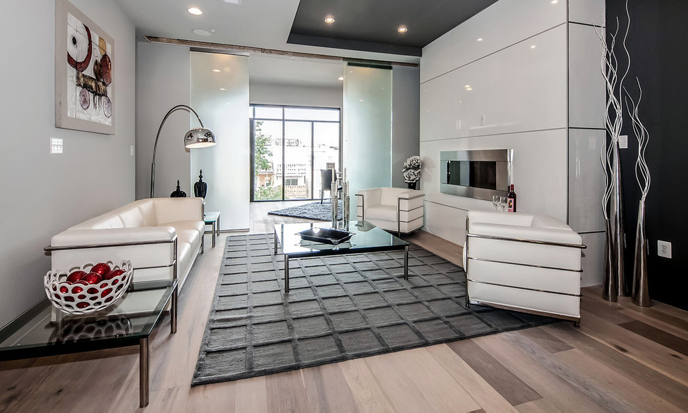 White Shag Rug Living Room Contemporary with None