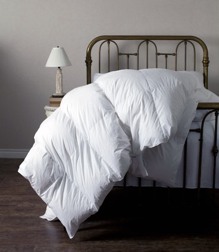 feather body pillow Bedroom Traditional with down bedding down comforter