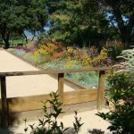 Bocce Ball Court  Transitional Landscape with Flower Beds