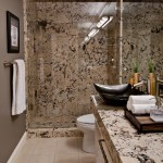 Delicatus Granite  Contemporary Bathroom with Asian