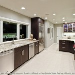 Delicatus Granite  Contemporary Kitchen with Stainless Steel