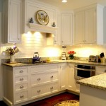 Luna Pearl Granite  Traditional Kitchen with Granite Countertop