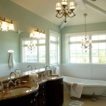 Sherwin Williams Sea Salt  Traditional Bathroom with Vaulted Ceiling